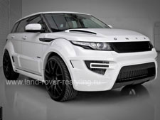 Onyx Range Rover Evoque Rouge Edition